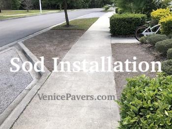 Sod Installation Venice FL