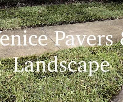 Venice FL Lawn Replacement