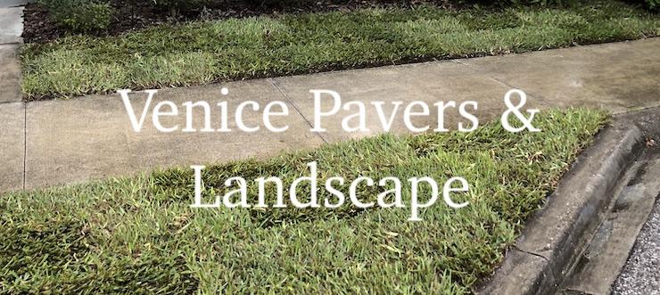 Grass Replacement Venice FL
